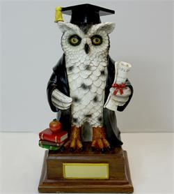 Graduation Owl - Large  Black