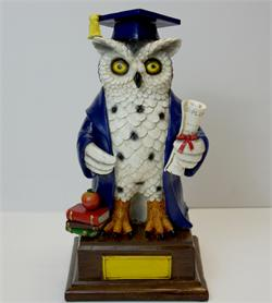 Graduation Owl - Large - Blue